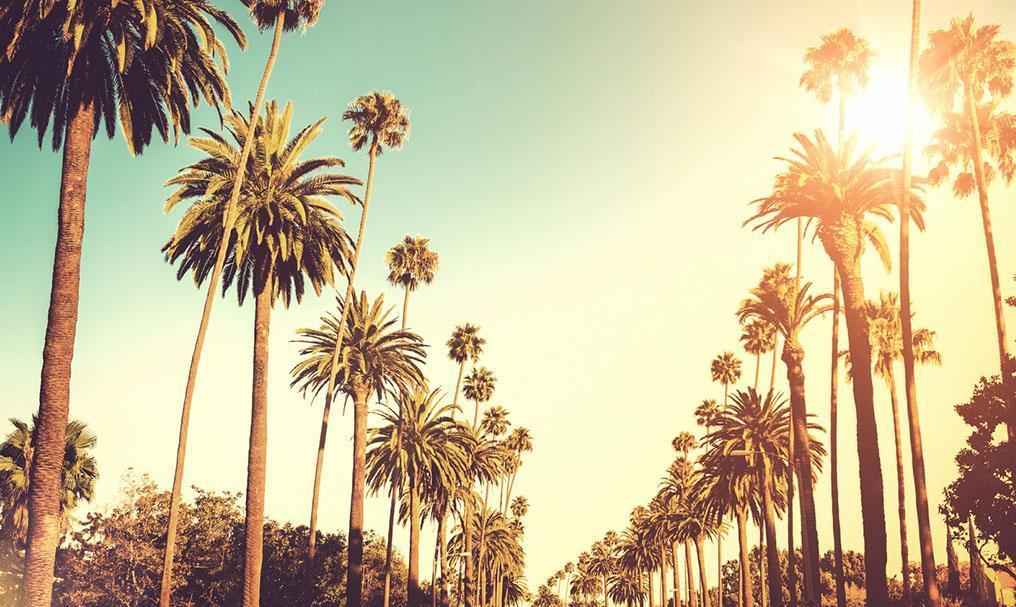 خدمات رایگان در لس آنجلس