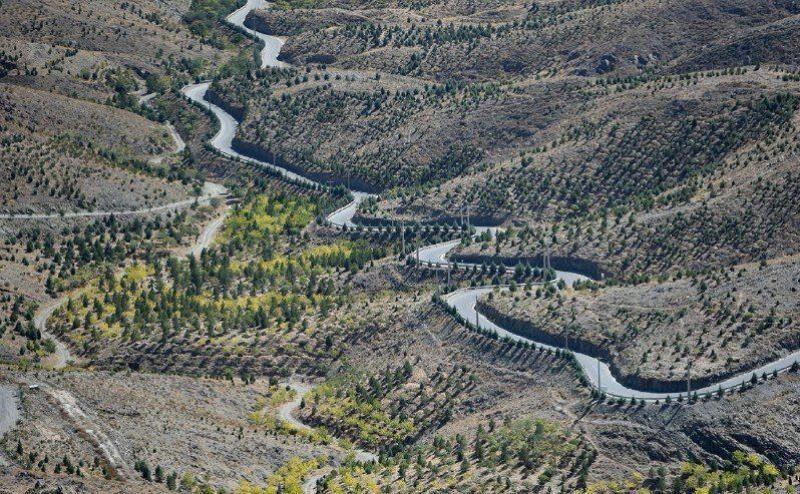 آیا کمربند جنوبی باوجود اطلاع از خسارات آن بر محیط زیست، باید ادامه پیدا کند؟